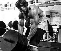 83103_ORIG-t_bar_rows_lats
