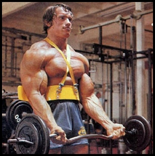 Bodybuildings arnolds blueprint for mass day 22 shoulders arnold bicep curl arm blaster1 malvernweather Choice Image