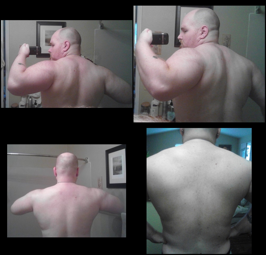 Bodybuildings arnolds blueprint trainer day 12 shoulders caliberbackmarch252015 tile malvernweather Image collections